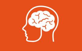 Самостоятельное продвижение сайта и психология поиска